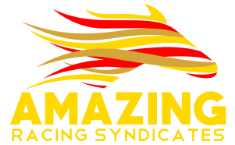 Amazing Racing Syndicates