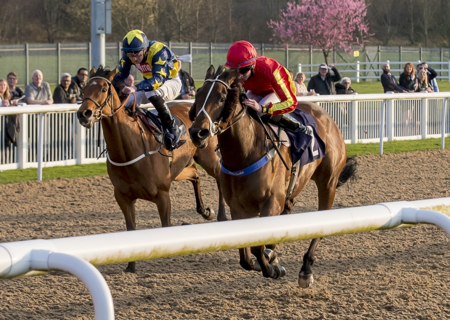 Sunshineandbubbles Winning At Wolverhampton