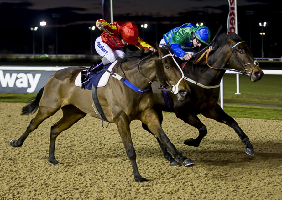 Second By A Nose At Wolverhampton